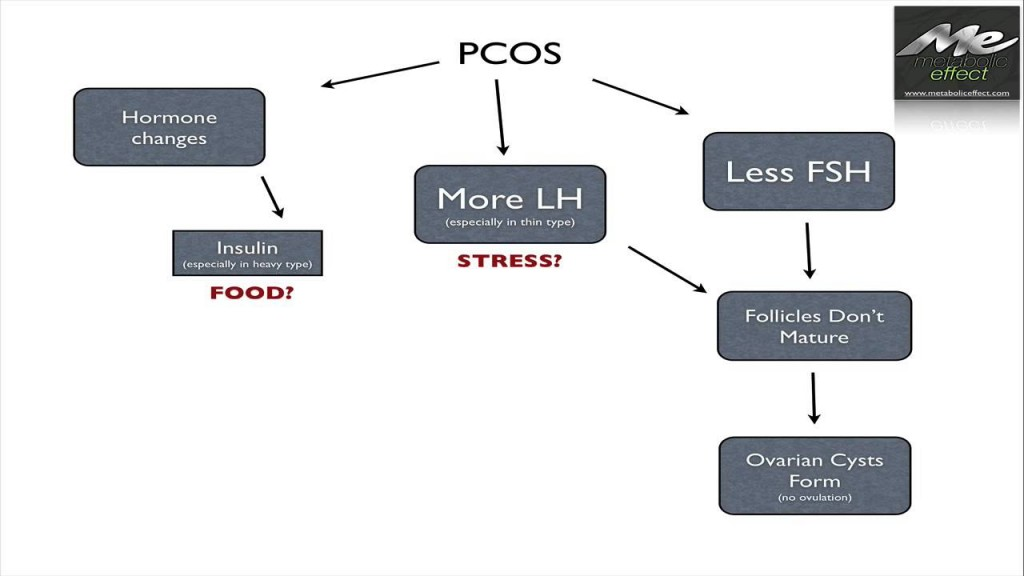{VIDEO} PCOS Causes: Diet & Stress